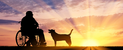 A man and his dog - stroke care